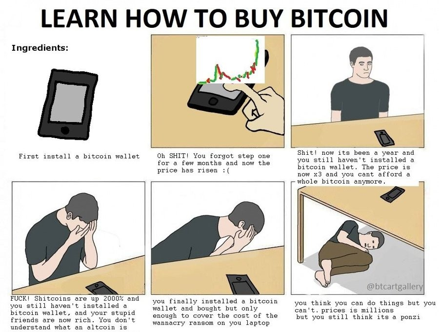 how to buy bitcoin (funny cryptocurrency gold rush comic)